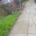 Litter at Intersection Of Kineo St & Mascoma St, Dorchester