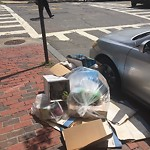 Litter at Intersection Of Spruce St & Beacon St