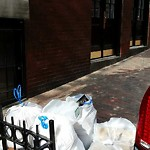 Residential Trash out Illegally at 127 Myrtle St