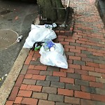 Residential Trash out Illegally at 73 Revere St
