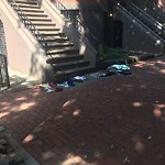 Litter at 35 Worcester Sq, Roxbury