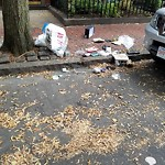 Residential Trash out Illegally at 227 233 W Canton St