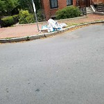 Residential Trash out Illegally at Intersection Of W Canton St & Carleton St