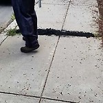 Pothole at 46 Leyden St, A5, East Boston