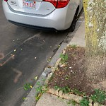 Illegal Parking at 309 W Fourth St, South Boston