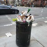 Overflowing Trash Can at 479 Beacon St, 11