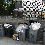 Residential Trash out Illegally at 11 Navillus Ter, Dorchester