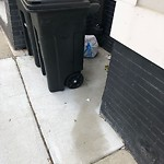 Residential Trash out Illegally at 495 E Fourth St, 1, South Boston
