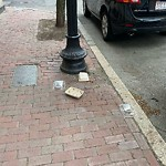 Litter at Intersection Of Haven St & Shawmut Ave, Roxbury