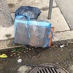 Residential Trash out Illegally at 141 Arlington St