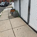 Residential Trash out Illegally at 18 Magazine St, Roxbury