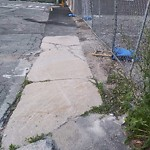 Broken Sidewalk at 1408 Centre St, Roslindale
