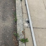 Broken Sidewalk at 41 Saybrook St, Brighton