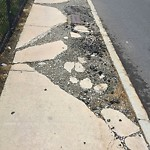 Broken Sidewalk at Intersection Of Aaron Pl & Albany St, Roxbury