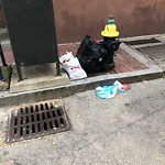 Residential Trash out Illegally at 240 Cambridge St