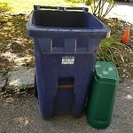 Recycling Cart at 150 Alabama St, Mattapan