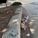 Litter at Intersection Of Columbia Rd & E Cottage St, Dorchester