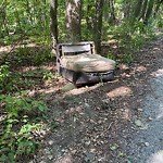 Residential Trash out Illegally at Olmsted Park