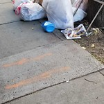 Residential Trash out Illegally at 610 Beacon St, 201