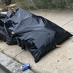 Residential Trash out Illegally at 269 E Cottage St, Dorchester