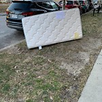 Residential Trash out Illegally at Intersection Of Redford St & Commonwealth Ave, Allston