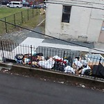 Residential Trash out Illegally at 47 Waverly St, Roxbury