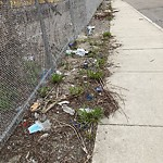 Litter at Intersection Of S Bay Ave & Moore St, Roxbury